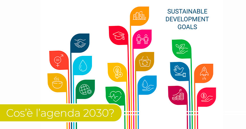 Agenda-2030--obiettivi-delle-aziende-per-lo-sviluppo-sostenibile