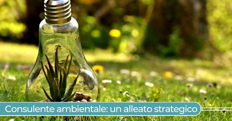Consulente ambientale_ un alleato strategico